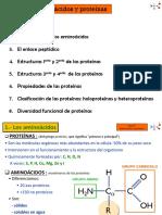 Proteinas diapositiva.pdf