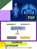 control hormonal.pptx