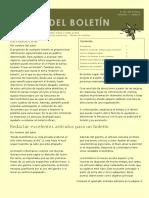 Modelo Boletin Para Informe.