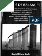 Nestor Gallo- Análisis de Balances
