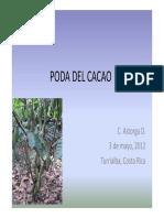 Poda Del Cacao - Curso Mag