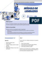 modulo_liderazgo.pdf