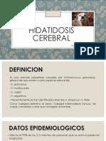 Sheyla Hidatidosis Cerebral