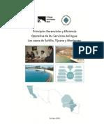 2010 Principios Gerenciales y Eficiencia - COLEF