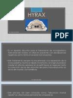 4.1.-Aparato Hyrax