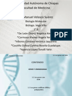 Genes y Cormosomas Cynthia