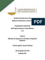 T2-Sujecion Grandes y Pequeñas Especies-Carrillo Aguilar