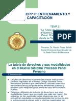 La Tutela de Derechos en el NCCP.pdf