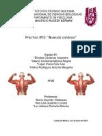 Reporte musculo cardiaco.docx