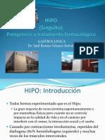 HIPO.pdf