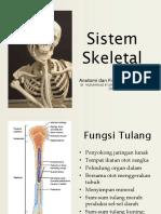 1 Anatomi & Fisiologi Manusia-Sistem Skeletal