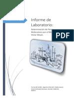 Trabajo Practico de Laboratorio IV PM con Victor Meyer.docx