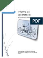 Trabajo Practico de Laboratorio II REDOX.docx
