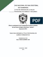 Tesis FAR421_Pra.pdf