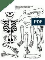 Esqueleto Para Armar