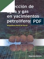 Inyección de Agua y Gas en Yacimientos Petroleros