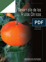 Cuajado y desarrollo de los frutos cítricos.pdf