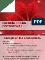 4. Energia en Los Ecosistemas