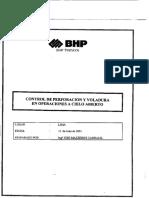 bhp.pdf