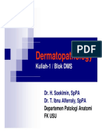 dms146_slide_dermatopathology.pdf