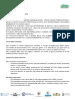 Programa Convive  - Información 2018-19.pdf