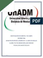 INFORME FINAL UnADM.pdf