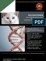 Clase 7. Mutaciones