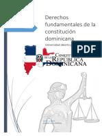 Derechos fundametales de de la constutucion domincana.docx