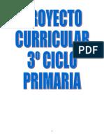 3Ciclo-de-Primaria curriculo.doc