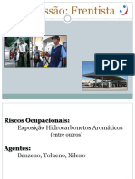 13Profissão Frentista.pdf
