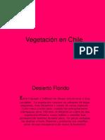 Vegetacion en Chile1