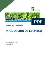 EDA Manual Produccion Lechuga 02 09