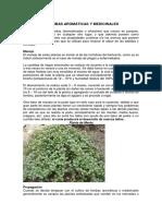 Catalogo Floristico Plantas Medicinales