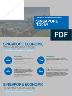 Singapore Business Environment