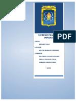 PASANTIA-MINERA (1).docx