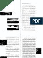 ARMANDO, A. UN SORTILEGIO GUARANI. SEPARATA 14.pdf