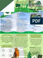 Ecología-2.docx