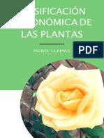 Clasificación de Flores