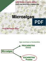 Micro Algas