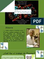 _Priones_