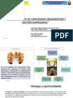 Ppt Asociatividad Gestion Empresarial Irmer Palacios 30 de Mayo Del 2018 Final