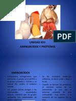 Amino Acid o Sy Protein as Clase Nueva
