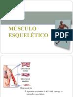 contracciondelmusculoesqueletico-131022171136-phpapp01.pdf