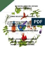 Colegio de Bachilleres Del Estado de Oaxaca Pl