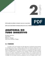 Anatomia Do Tubo Digestivo
