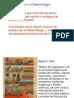 paleontologia 01