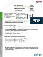 Amina.pdf