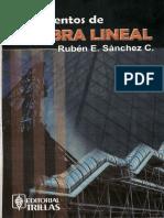 Fundamentos de Algebra Lineal - Ruben Sanchez