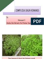 simplisia tanaman kemangi