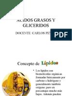 Lipidos Final